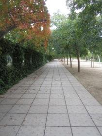 Avenidas y carriles del parque completamente vacío.